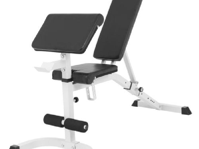 banc de musculation r glable inclin d clin avec pupitre biceps musculation annonce. Black Bedroom Furniture Sets. Home Design Ideas