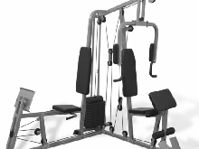 vidaXL Appareil de Fitness Multifonctions Station Fitness Traction Musculation